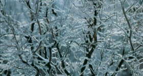 Ice_Storm_001